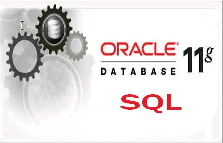 oracle-sql Tranning